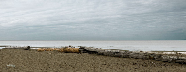 Photo of the beach near UBC